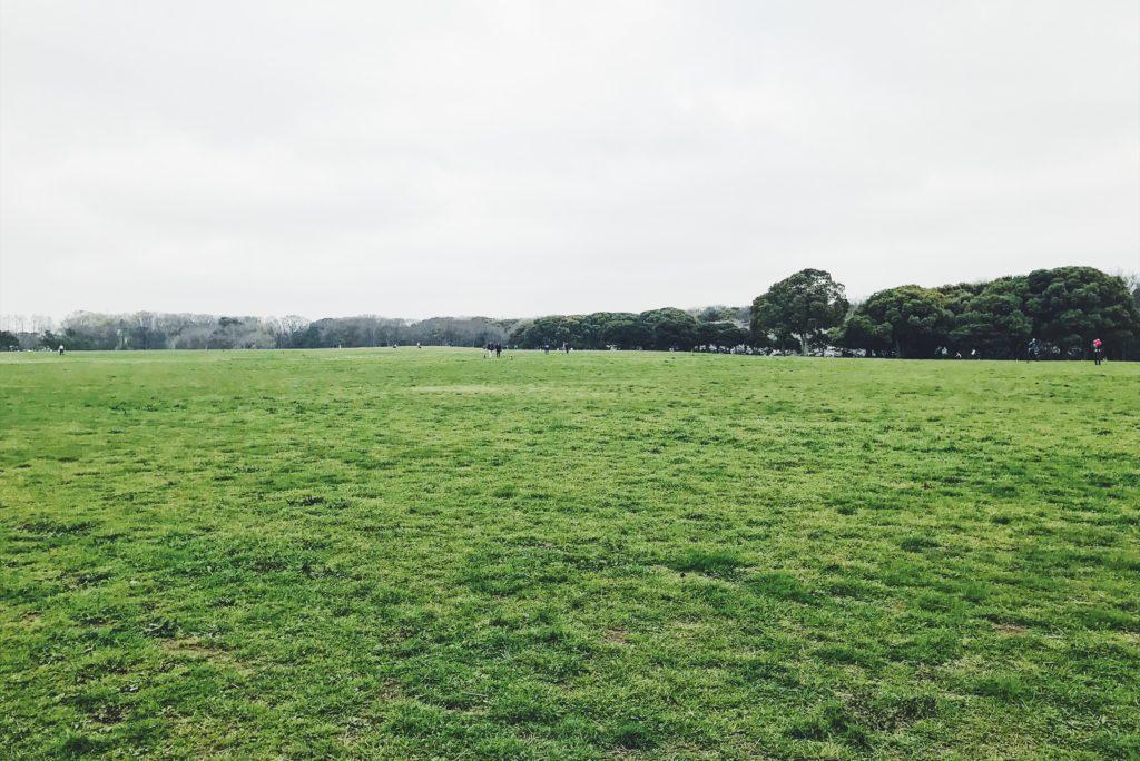 広大な芝生エリアが広がる水元公園