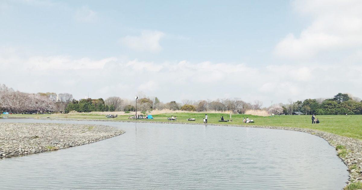 浅い川が流れる芝生エリア。夏場は水遊びも
